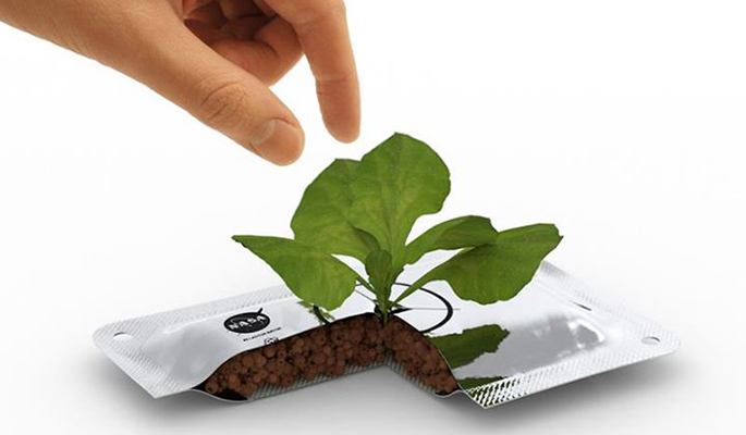 Plant-System-Would-Give-Astronauts-Fresh-Food-in-Space-iHidroUSA-blog-news-post-information-hydro-indoor-outdoor-grow-hydrop