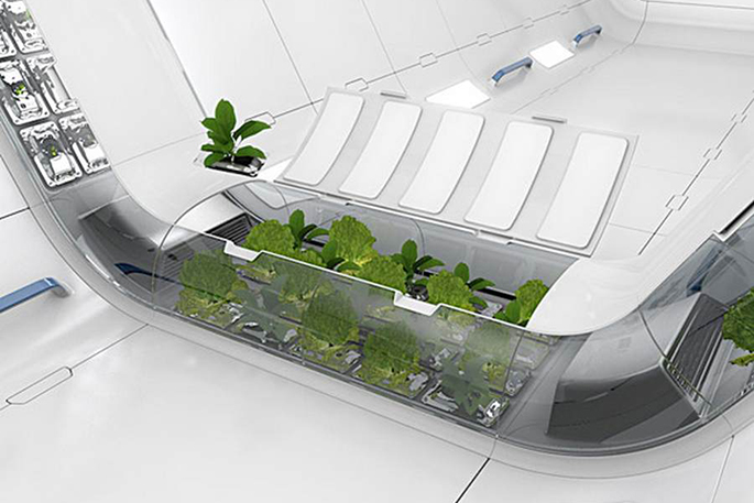 Space-Plant-Plant-System-Would-Give-Astronauts-Fresh-Food-in-Space-iHidroUSA-blog-news-post-information-hydro-indoor-outdoor-grow-hydro-nasa-3