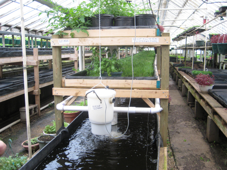 aquaponics_at_growing_power_milwaukee